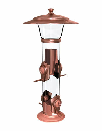 Radiant Finch Feeder