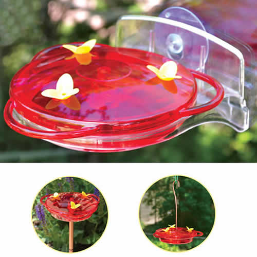 3 in 1 Hummingbird Feeder