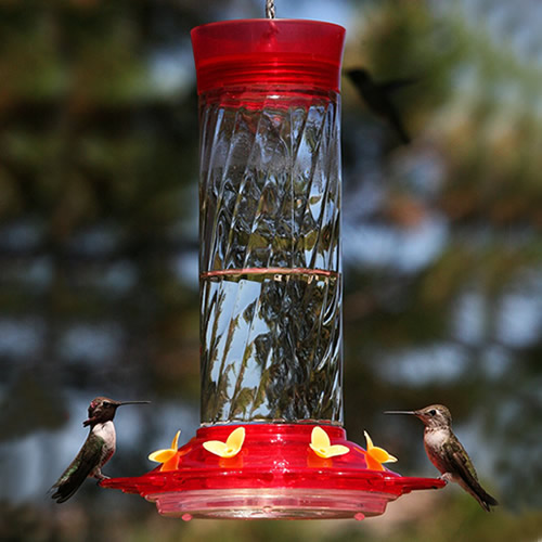 Diamond Hummingbird Feeder