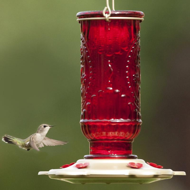 Duncraft.com: Red Vintage Hummingbird Feeder