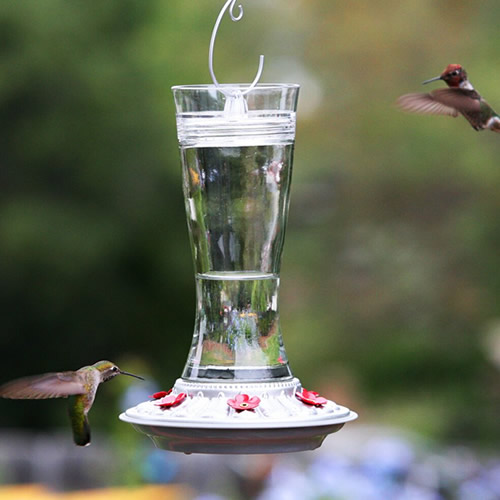 Victoria Hummingbird Feeder