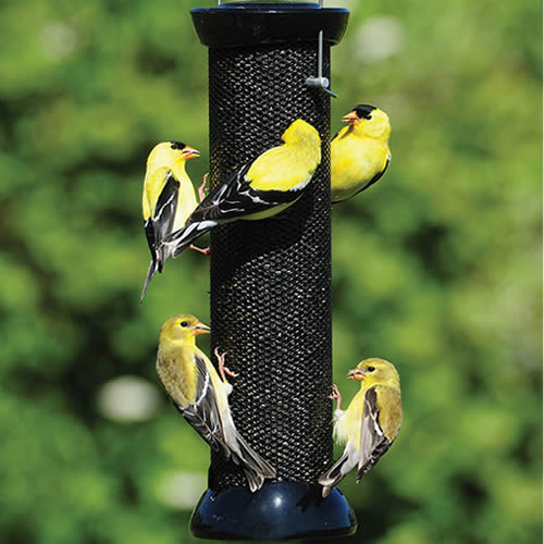 "Onyx Clever Clean 12"" Finch Magnet Feeder"