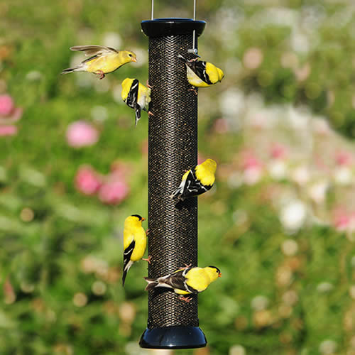 "Onyx Clever Clean 18"" Finch Magnet Feeder"