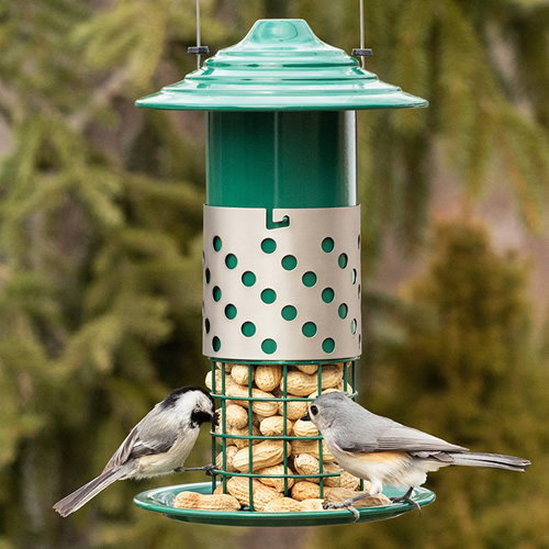Combo mealworm suet balls or peanut feeder for How to make suet balls for bird feeders