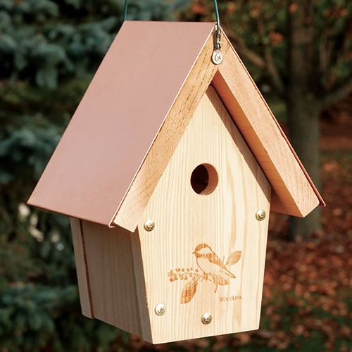 Coppertop Hanging Wren and Chickadee House