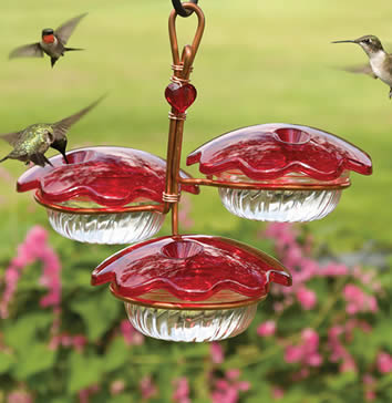 Copper Trio Hummingbird Feeder Home Coupons