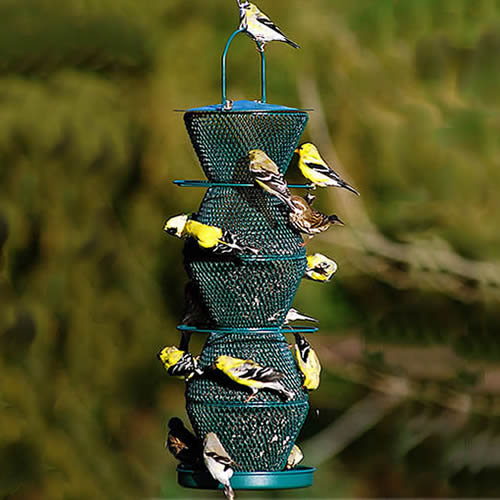 No/No 5 Tier Green Feeder