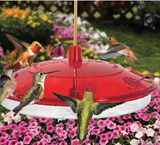 Happy Eight Hummingbird Feeder