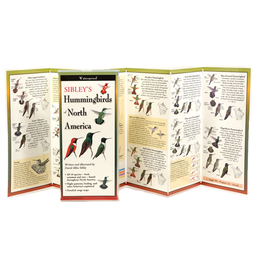 Sibleys Hummingbirds of North America Folding Guide