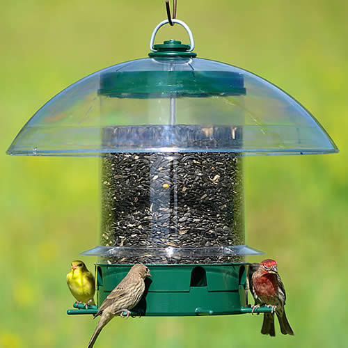 Super Carousel Wild Bird Feeder