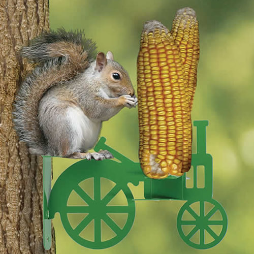 Corn on the Tractor Squirrel Feeder