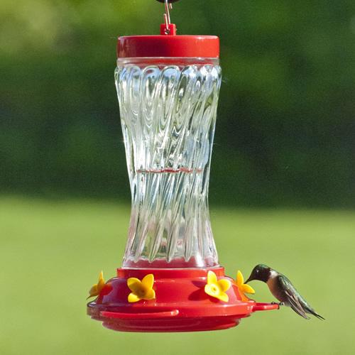 duncraft com  16 oz swirl glass hummingbird feeder