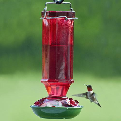 Red Glass Hummingbird Feeder
