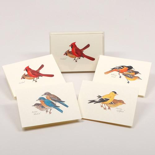 Peterson Bird Notecard Assortment