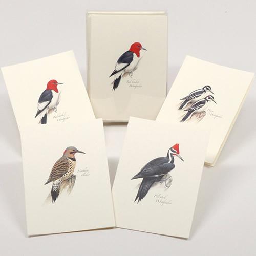 Peterson Woodpecker Notecard Assortment