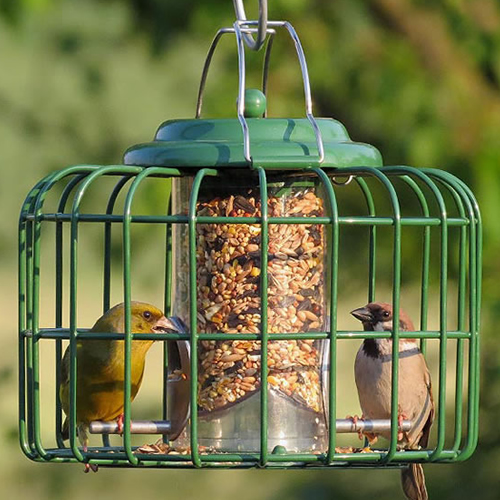 The Nuttery Mini Seed Feeder