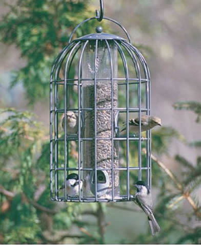 The Nuttery Classic Seed Feeder