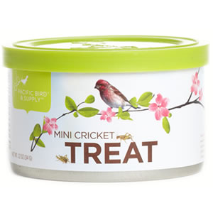 Mini Crickets Treat