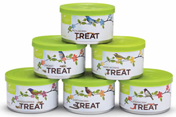 Assorted Mini Insect Treats