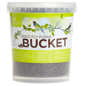 Dried Fly Pupae Bucket