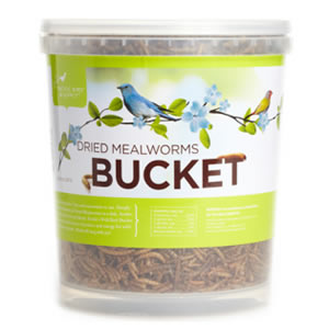 Dried Mealworms Bucket