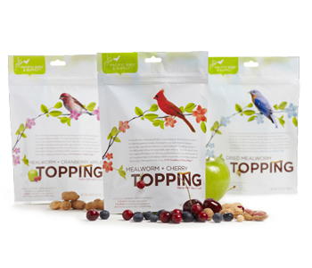 Mealworm Topping Combo Set