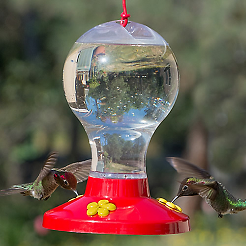 Perky-Pet Globe Hummingbird Feeder