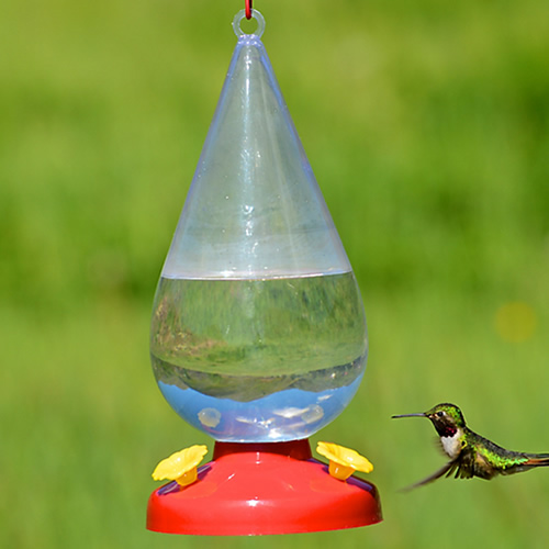 Perky-Pet Dew Drop Hummingbird Feeder