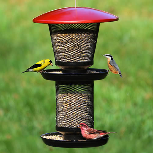 No/No Multi-Seed Wild Bird Feeder (RBMT00341 Woodstream) photo