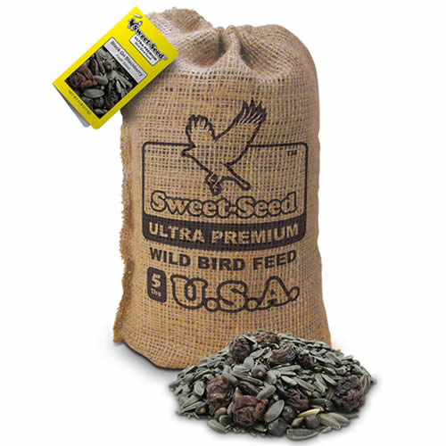 Sweet Seed Black on Blackberry Bird Seed