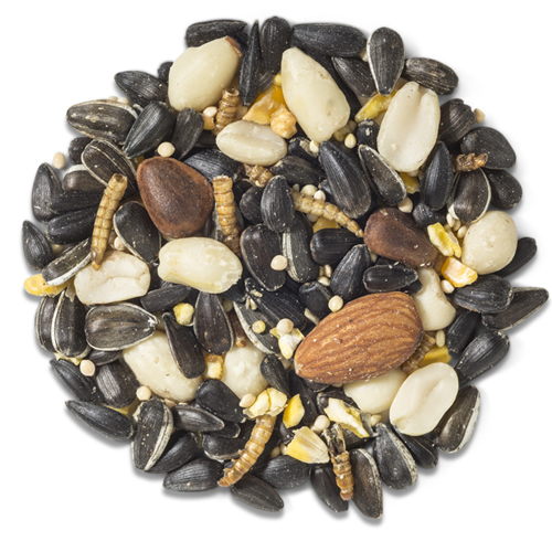 Sweet Treats Woody Worm Woodpecker Blend Bird Seed