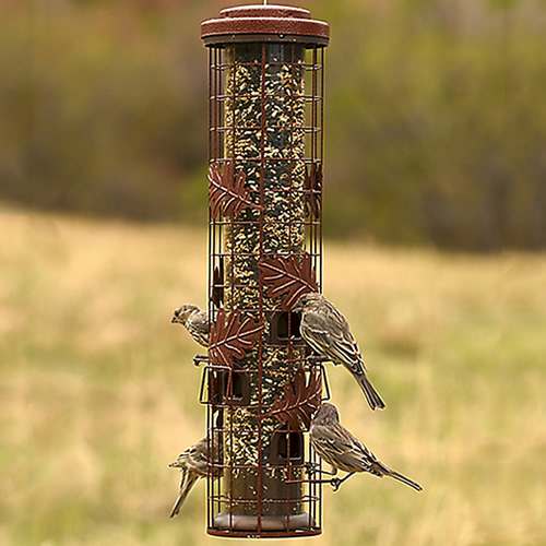 Squirrel-Be-Gone Cylinder Feeder