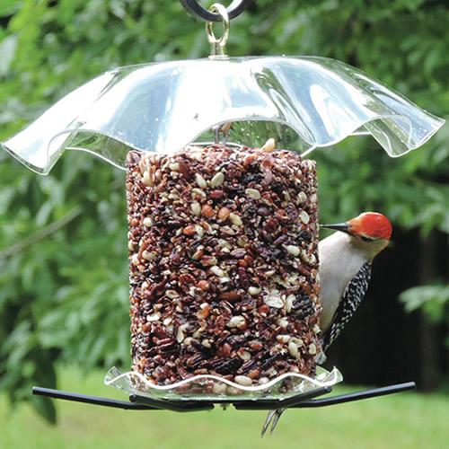 BirdsChoice Seed Cylinder Feeder