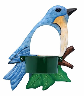 Bluebird Window Bird Feeder