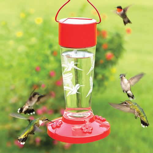 Red Solar Hummingbird Feeder