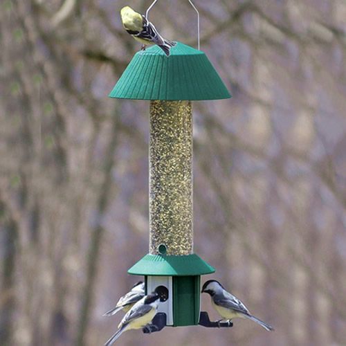 Squirrel Defeater Nyjer Feeder