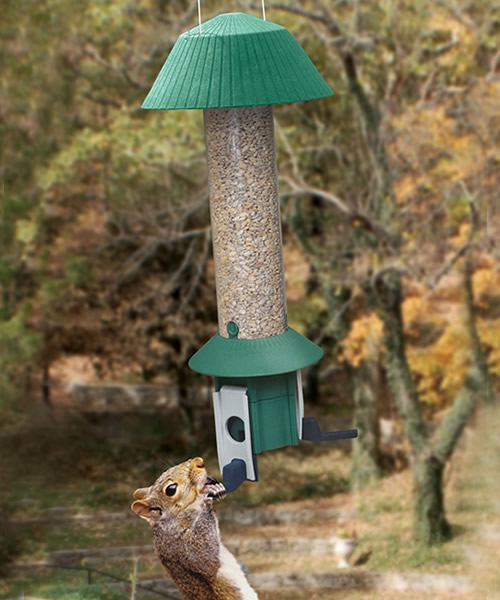 Squirrel Defeater Nut Feeder