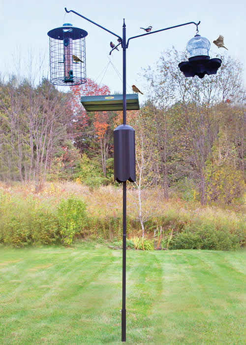 Squirrel-Proof Bird Feeding Station