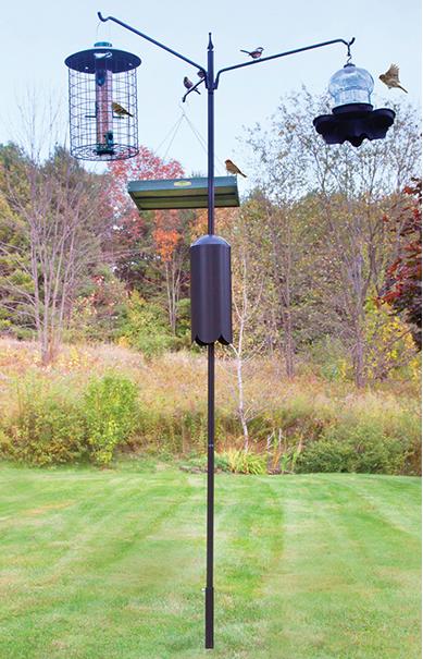 Squirrel-Proof Bird Feeding Station