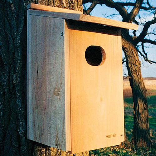 Cedar Wood Duck House