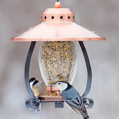 Mini Copper Finish Lantern Feeder