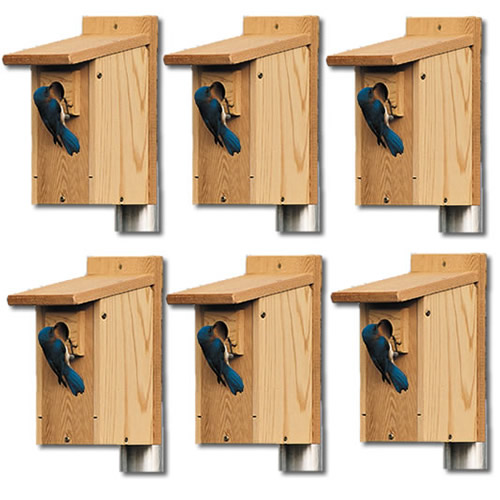 Duncraft Bluebird Houses - Set of 6