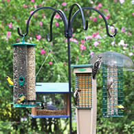 Duncraft Bird Feeder Poles Brackets Shepards Poles