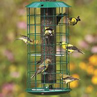 bird spiral fiinch finch thistle feeders products inch copper feeder