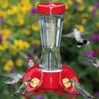 Hummingbird Supplies Four Flower Frolic