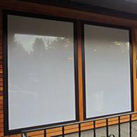 Bird-Safe® Window Strike Solutions | Prevent Bird Window