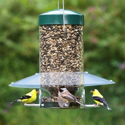platform feeder pavilion wild bird cedar p
