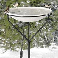 heated bird bath with metal stand