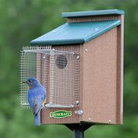 ... Bluebird House With Pole U0026 Noel Guard