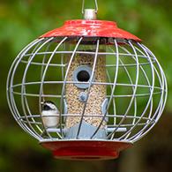 The Nuttery Helix Squirrel Proof Peanut Feeder Bird Feeder